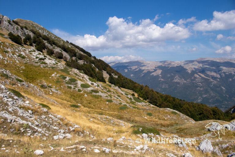 Een uitzicht van de bergen in nationaal park d'Abruzzo, Lazio e Molise, in Italië