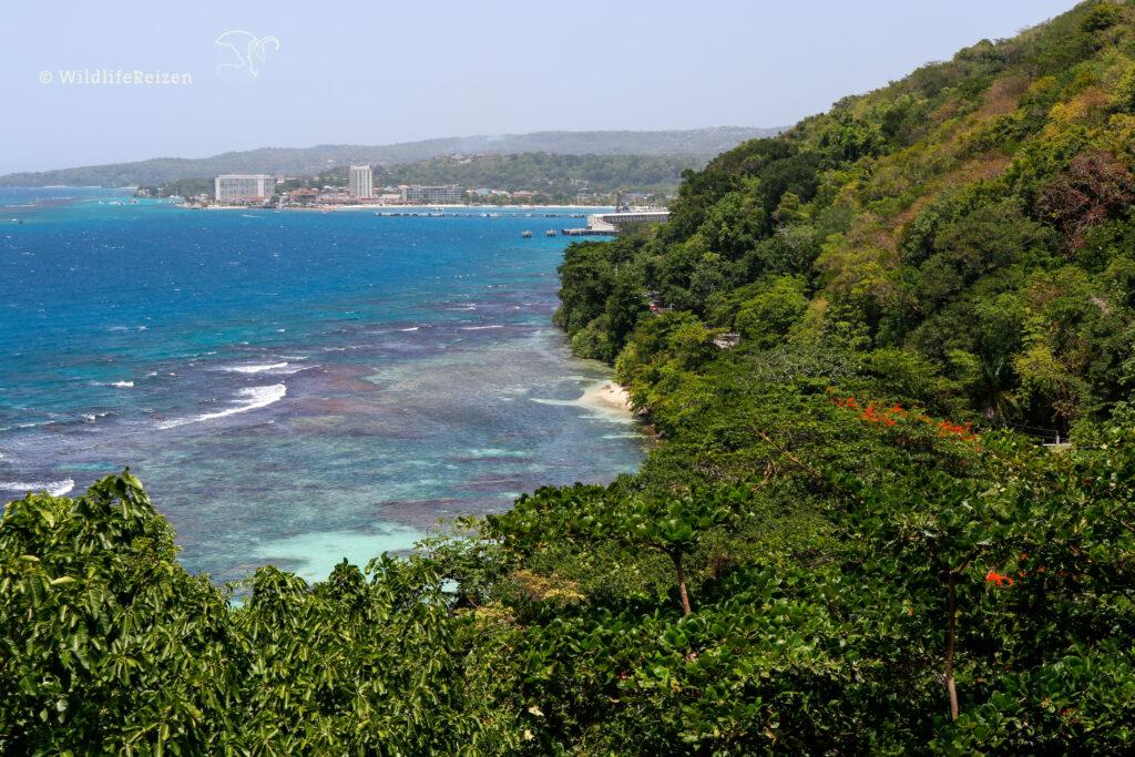 Uitzicht over de Caribische zee