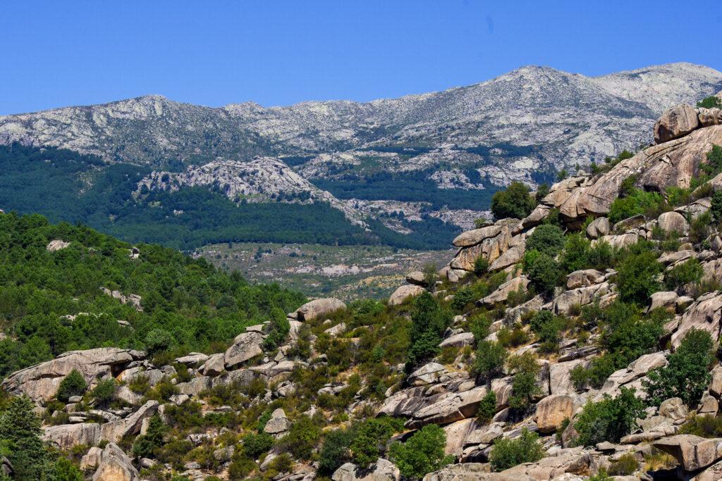 Spanje, een van de wildlifebestemmingen in Europa